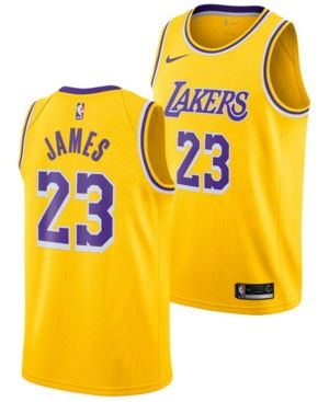 2ab59b10651 Nike LeBron James Los Angeles Lakers Icon Swingman Jersey