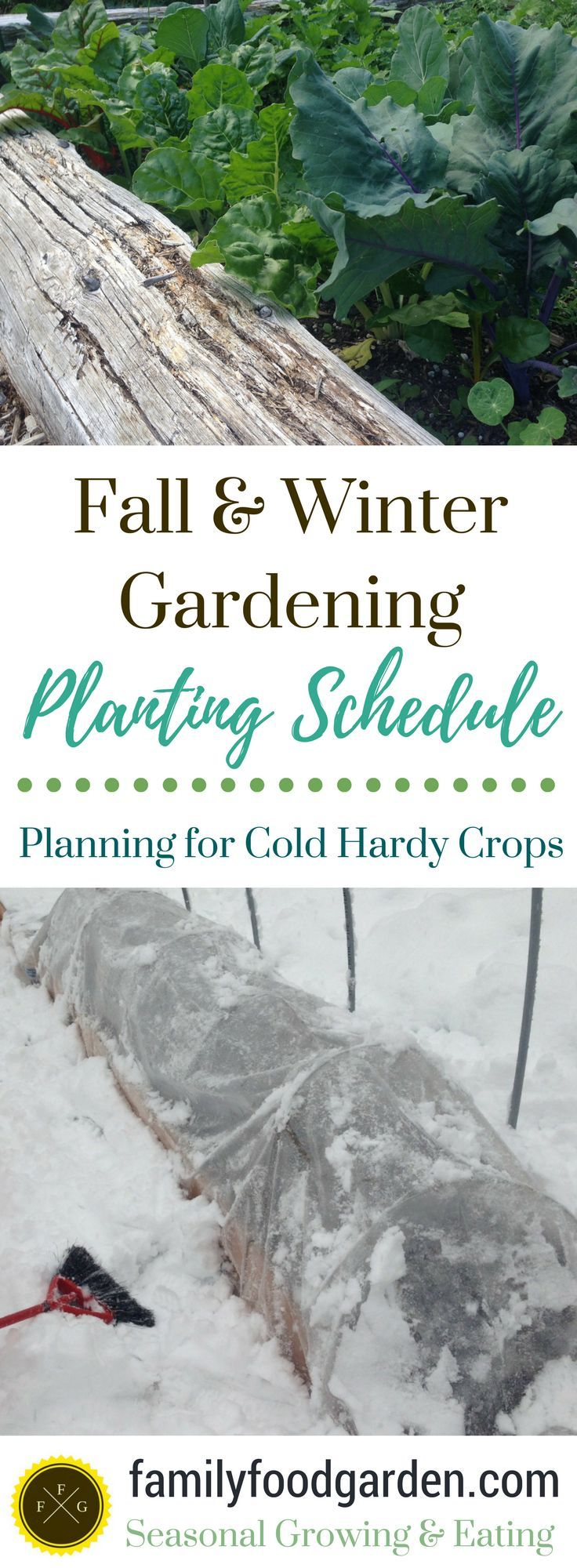 Ultimate Guide to Fall & Winter Gardening