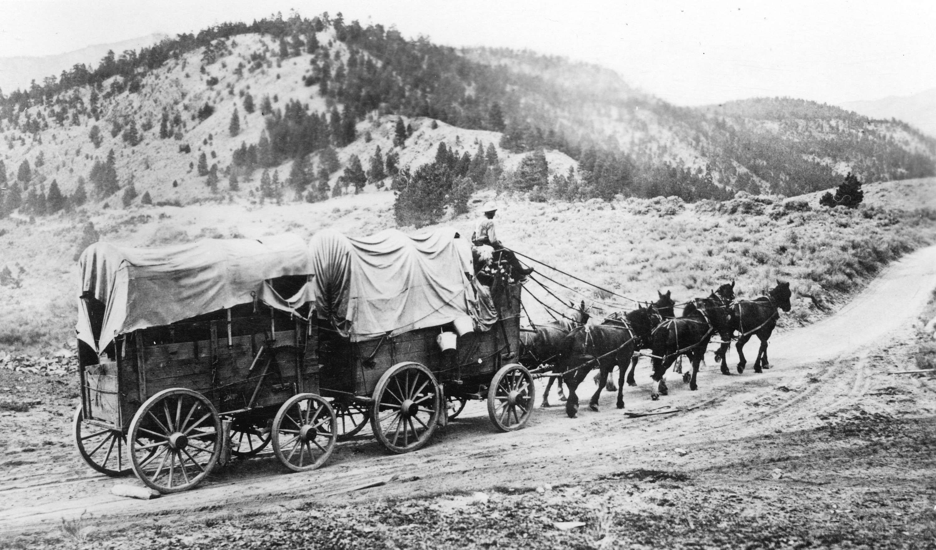 Pin by Angel Beard on Covered Wagons | Pinterest | Covered wagon and ...