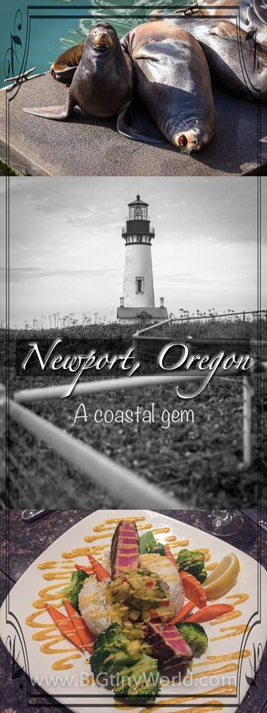 Newport Oregon: A Coastal Gem | BIG tiny World Travel | The Pacific Northwest has so many beaches to explore.  Newport is one of the many the Oregon Coast has to offer | #oregoncoast #travel #travelcouple #travelblog #beaches #pacificnorthwest #oregontravel