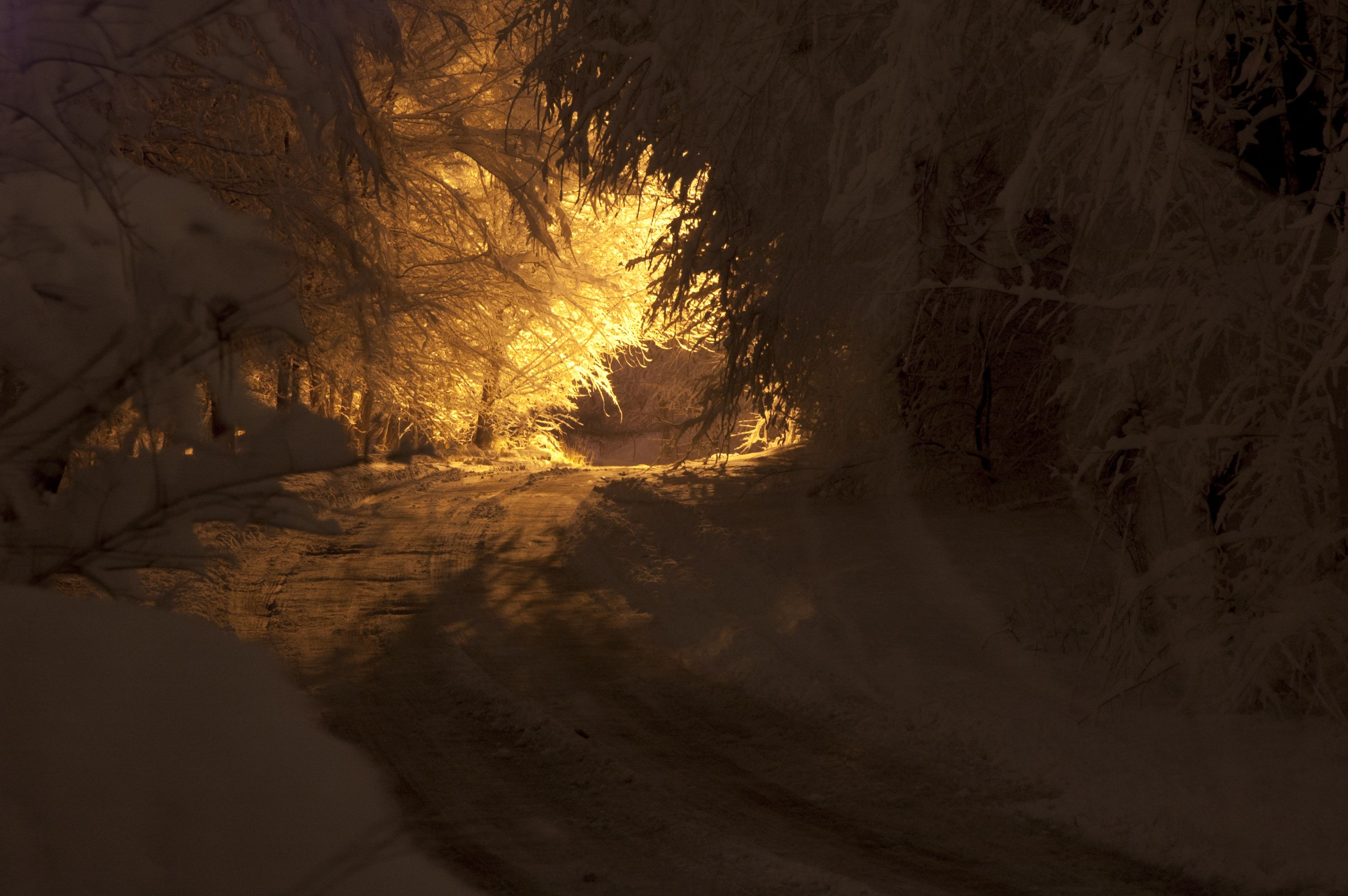 Cy's Road in Sandy, Utah after a wet snowfall. Photo