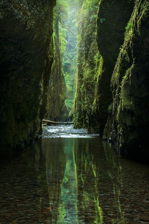 Stream Between Rock Walls by Wildlife Experience at wildlifeexperience.tumblr.com