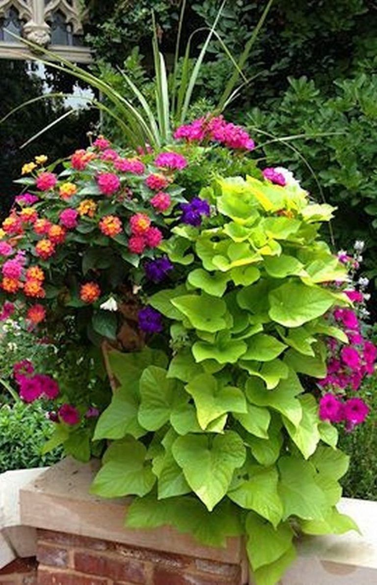 46 Cheap Garden Patio Decorating Ideas is part of Container gardening flowers, Garden, Container gardening, Plants, Garden containers, Garden vines - Think about garden and patio decorations just as you would if you were designing a room in your home  We […]