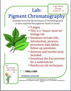 Leaf Pigment Chromatography   Science   Paper chromatography ...