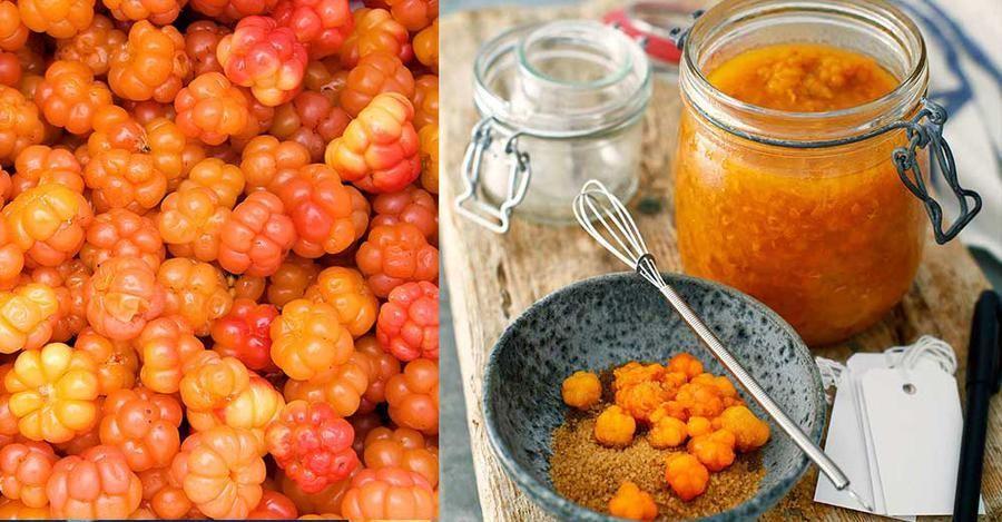 hjortronsylt recept frysta