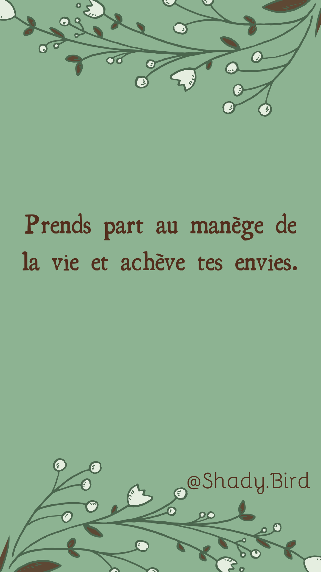 Citation Motivation Vie Courte Citation Francais Citation Destin Motivation