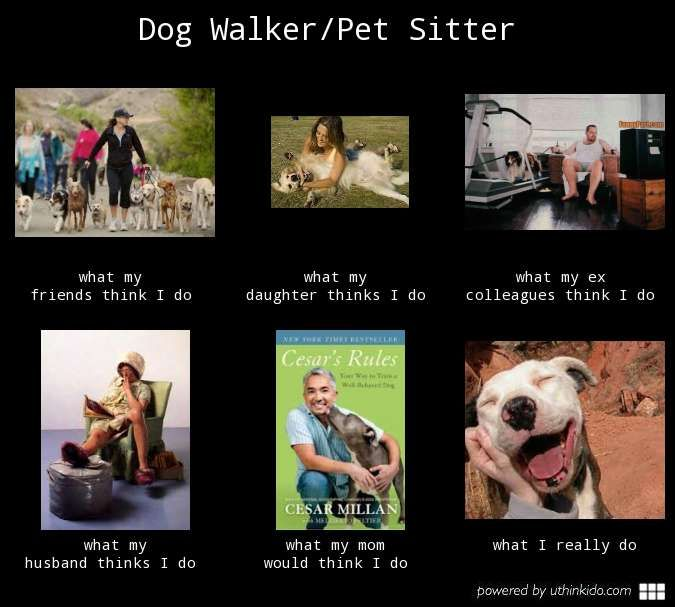 Dog Walker Pet Sitter What People Think I Do What I Really Do