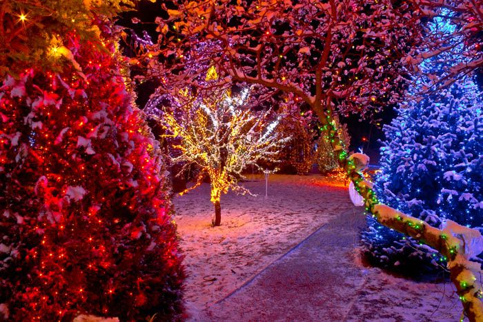 the top 6 mistakes people make when buying led christmas lights by christmas designers christmasdesigners christmaslights christmas