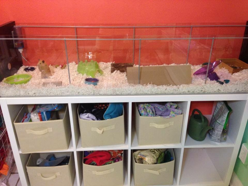 Ikea Detolf hamster cage Hamster Jaula para erizo Jaulas para