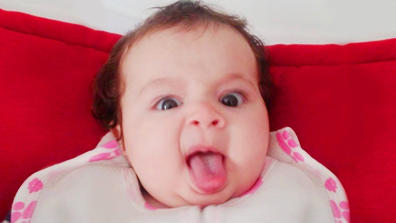 Youtube Downloader Baby Reaction To Everything Funny