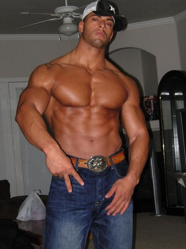 Hot Male Gay Muscles Hard Man