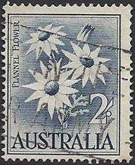 Australia---2-shillings---Flannel-Flower
