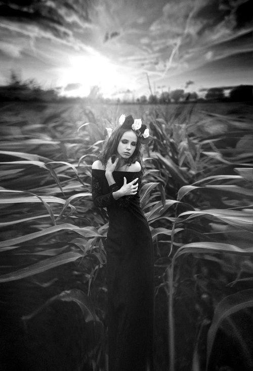 Photo by Vinny K. S)