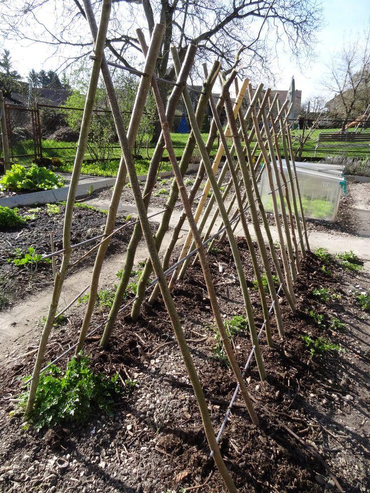 Kürbis und Gurken - Klettergestell. Klapp- und zerlegbar mit Stecken aus dem Garten und Armierungseisen-Abschnitten. #kräutergartenpalette