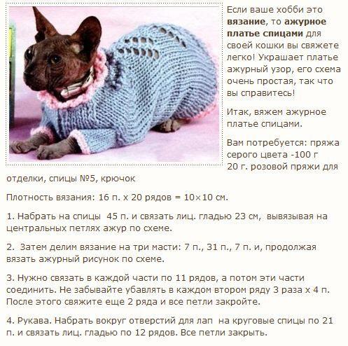 вязание для кошек спицами и крючком схемы с описанием Animales Y