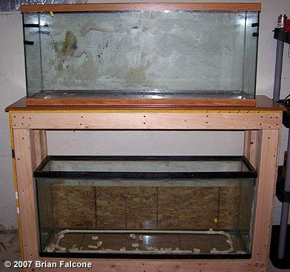 Double 55 gallon stand aquarium stand plans fish tank for 55 gal fish tank stand