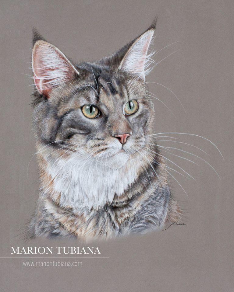 Marion tubiana marion tubiana pinterest croquis - Croquis animaux ...