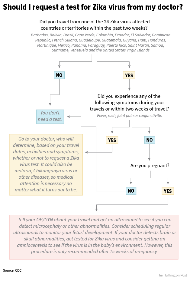 Should You Get Tested For Zika Virus A Flowchart  Zika Virus And