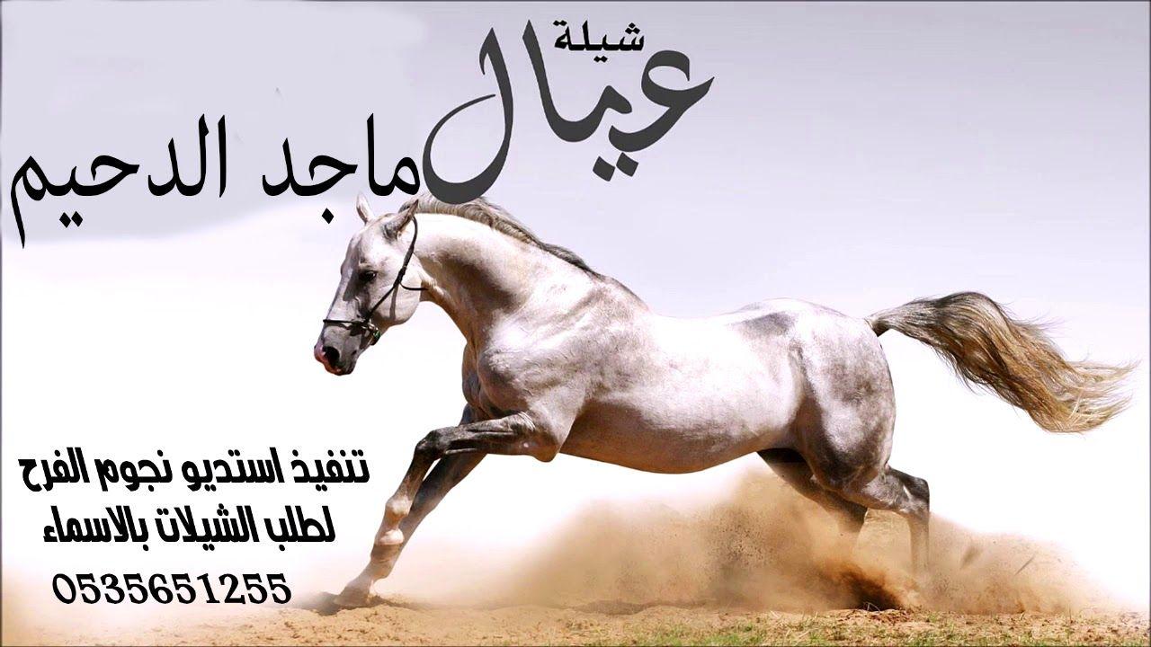 شيلة ابناء ماجد الدحيم شيلة فاح الشذاء والازهار استديو نجوم الفرح Animals Horses Youtube