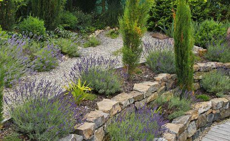 Mediterraner Garten - planen, anlegen und Tipps Garten