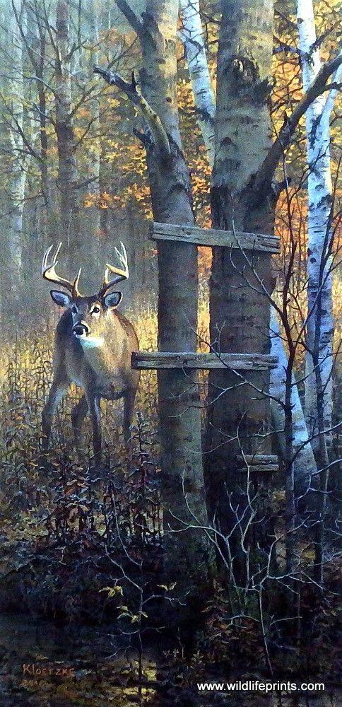 Artist Don Kloetzke Unframed Whitetail Deer Print The Buck Stops Here Deer Artwork Deer Painting Hunting Art