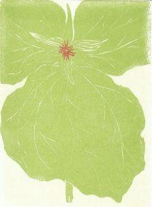Frostic   Green Flower