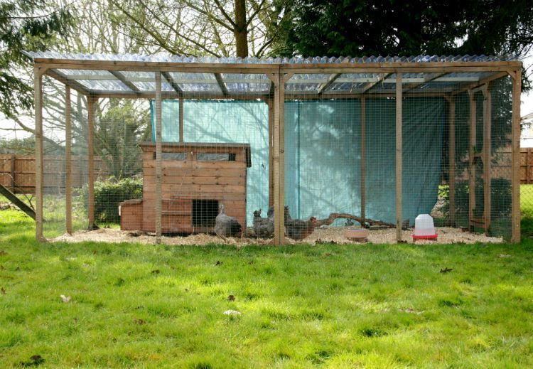 45 Unique Chicken Run Ideas For Garden is part of Chicken enclosure, Diy chicken coop, Chicken coop run, Chicken diy, Chicken runs, Building a chicken coop - So you don't need to fret about them destroying your furniture  A coop isn't merely a shelter, it is a house wherever your chickens live  You can construct a chicken coop free of nail, …
