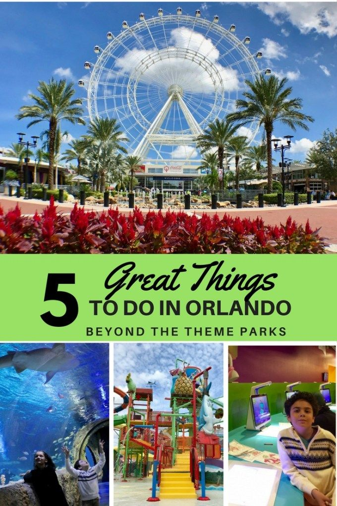 5 Great Things To Do In Orlando Beyond Theme Parks Usa