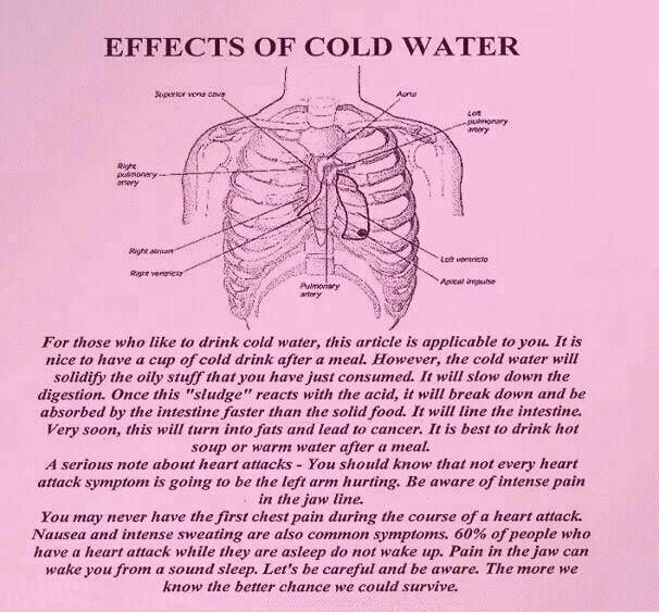And Here Are The Best Times To Drink Water For Optimum Health Alkaline Water Salud Escaleras Agua