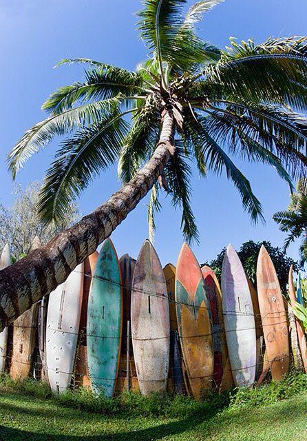 Surfing, Beach Life, Beach