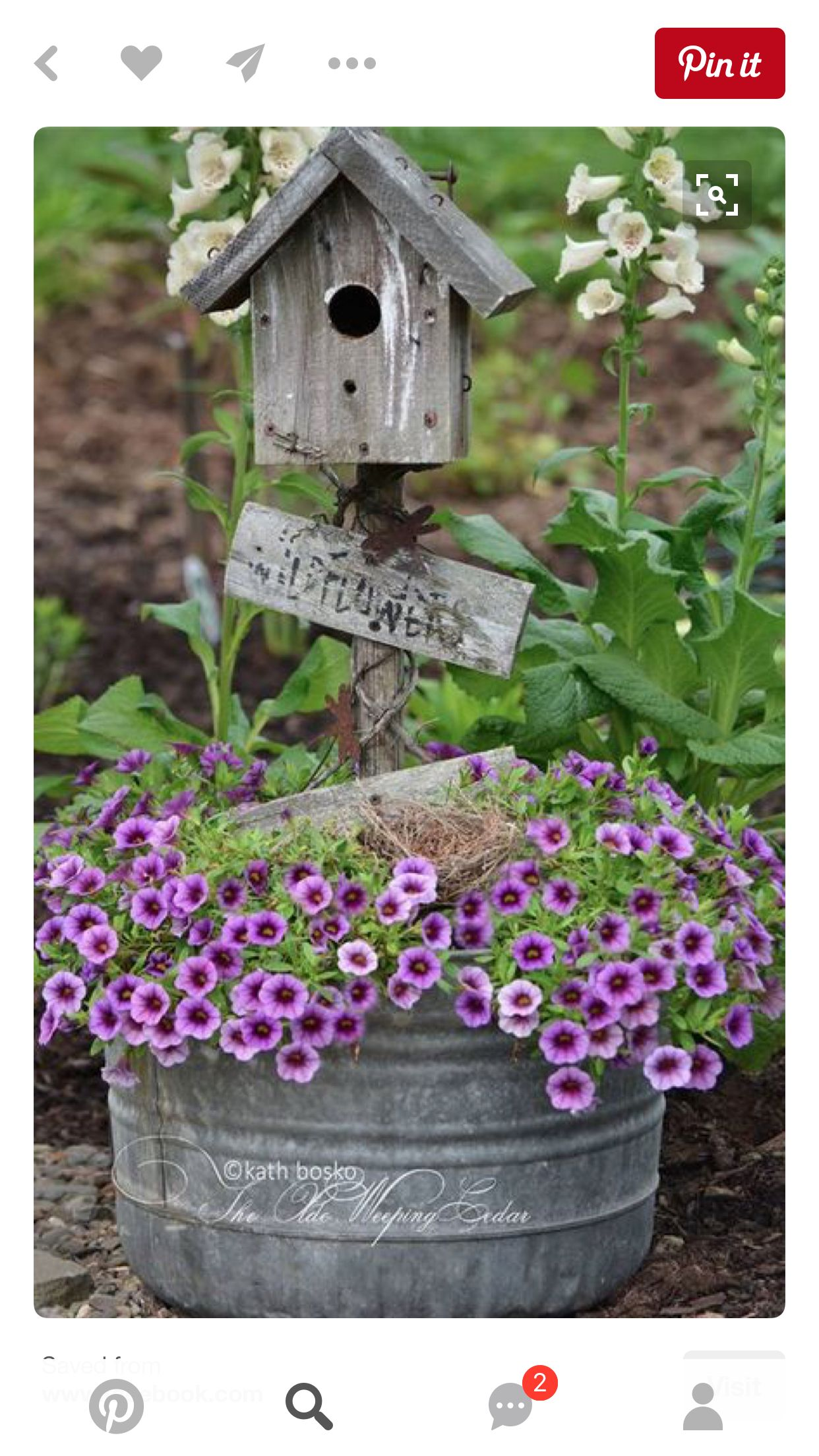 Pin by Barbara Fuches on Gardens and Flowers | Pinterest | Metal tub ...