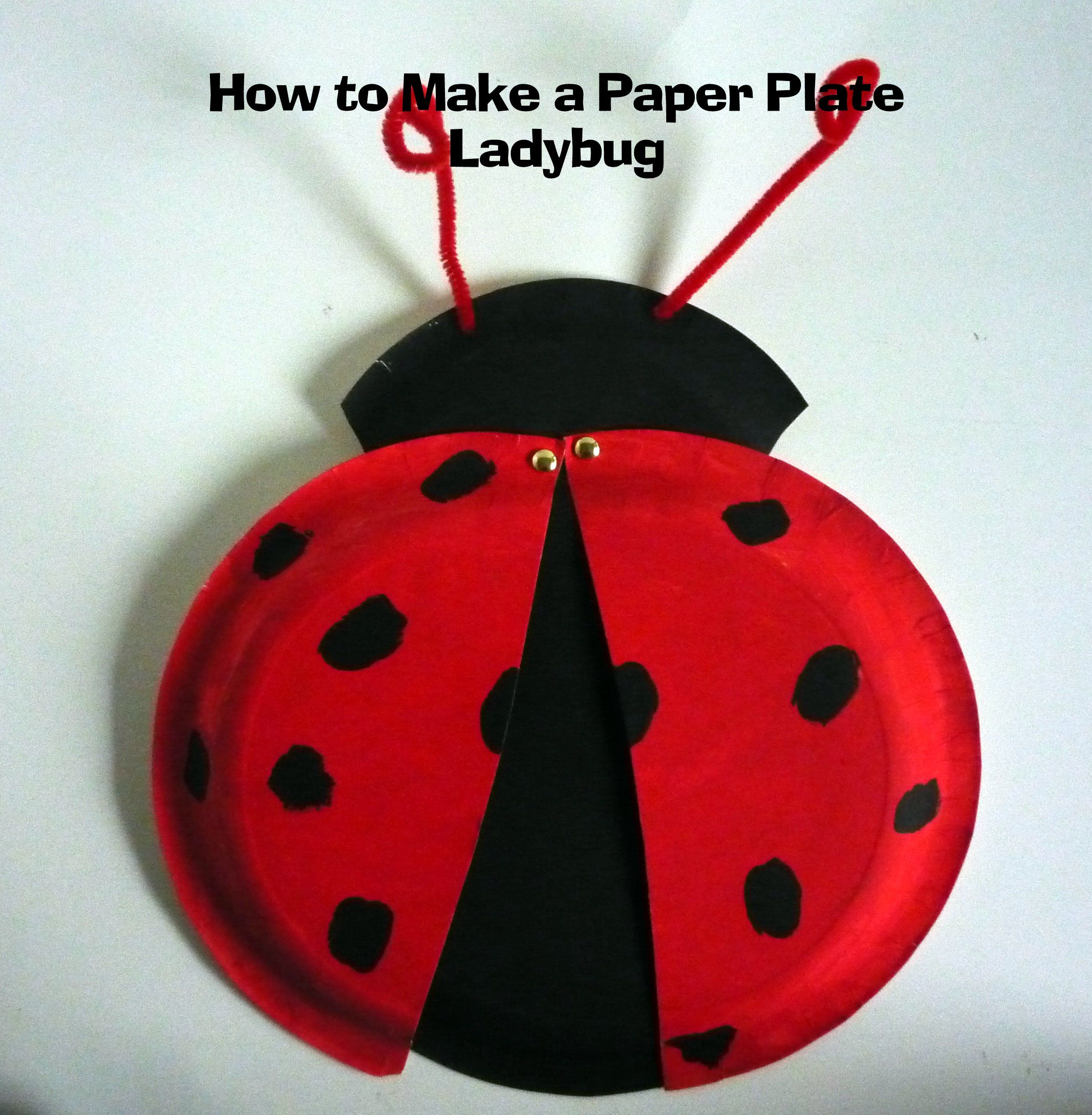ladybug paper Preschool and kindergarten children will find this a fun and busy craft just help them with the cutting part of this craft you'll enjoy showing the kids how easy it is to fold the paper and cut the shape to make this paper ladybug.