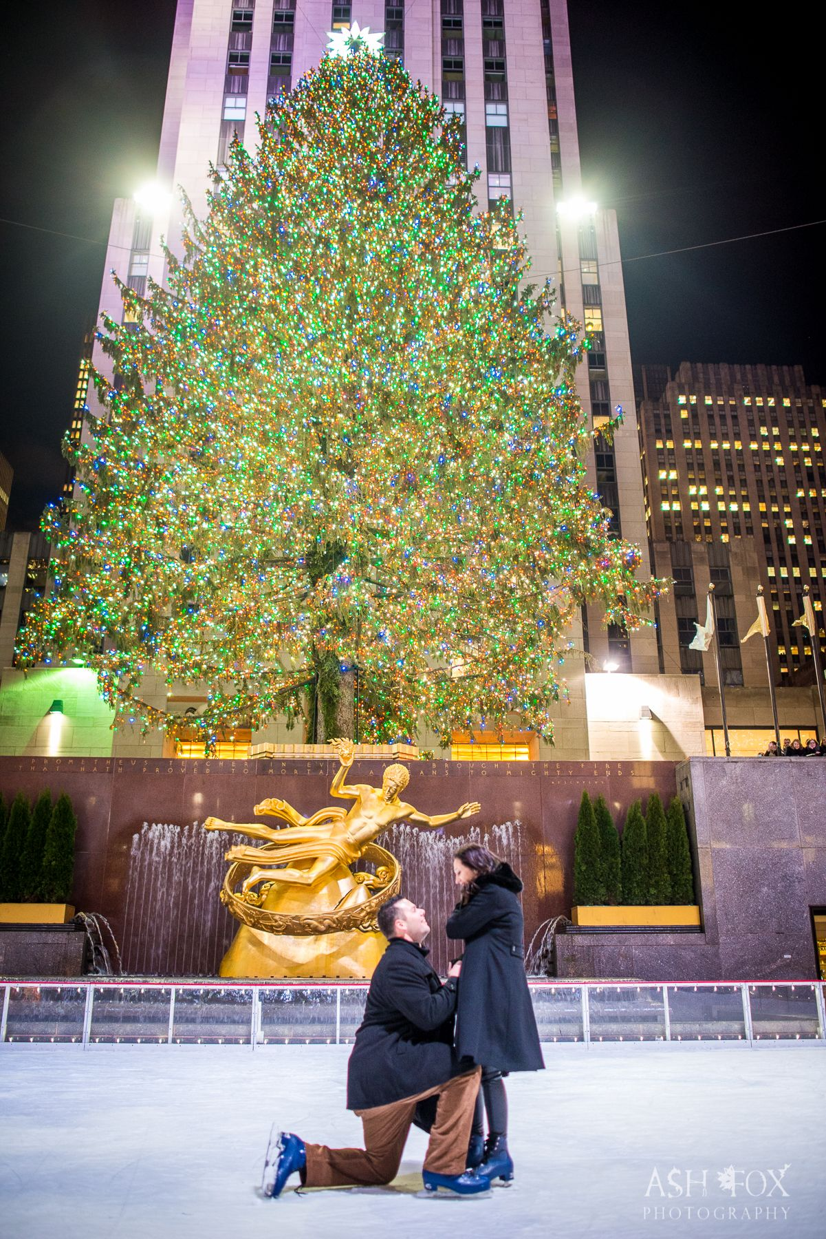 Pin by Ash Fox on NYC Winter & Christmas Proposals