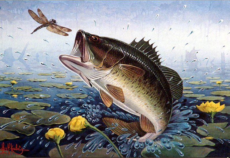 любите фотографировать картинки про рыбалку для декупажа хоть как облегчить