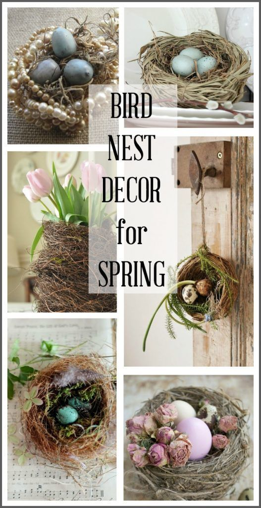This post contains a variety of ways to use bird nests in your spring home decor including: tablescapes wall decor flower arrangements and more! #hymnsandverses #birdnest #birdsnest #nest #style #shopping #styles #outfit #pretty #girl #girls #beauty #beautiful #me #cute #stylish #photooftheday #swag #dress #shoes #diy #design #fashion #homedecor