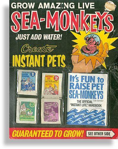 Sea Monkeys Sea Monkeys Childhood Memories Vintage Toys
