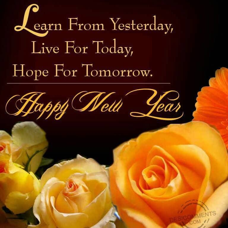 Happy new year pictures image by Diane Del Vecchio on Only