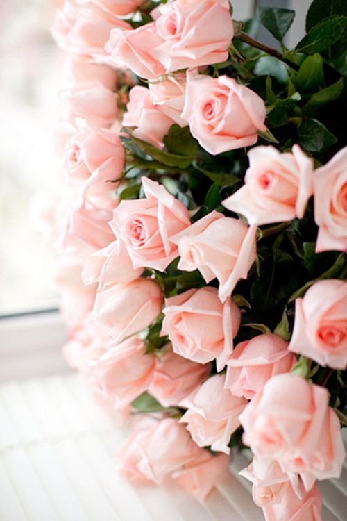 STYLEeGRACE ❤'s these pink roses!