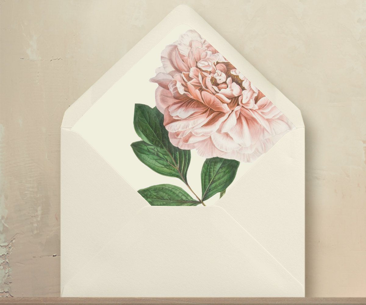 Blush Pink Peony Envelope Liners Diy Garden By Oakandorchid