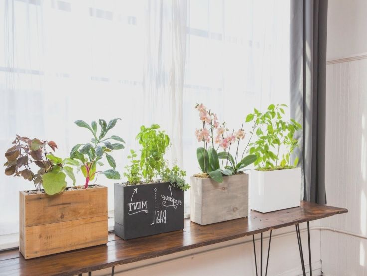 indoor windowsill planter box 2 plants just place windowsill window ...