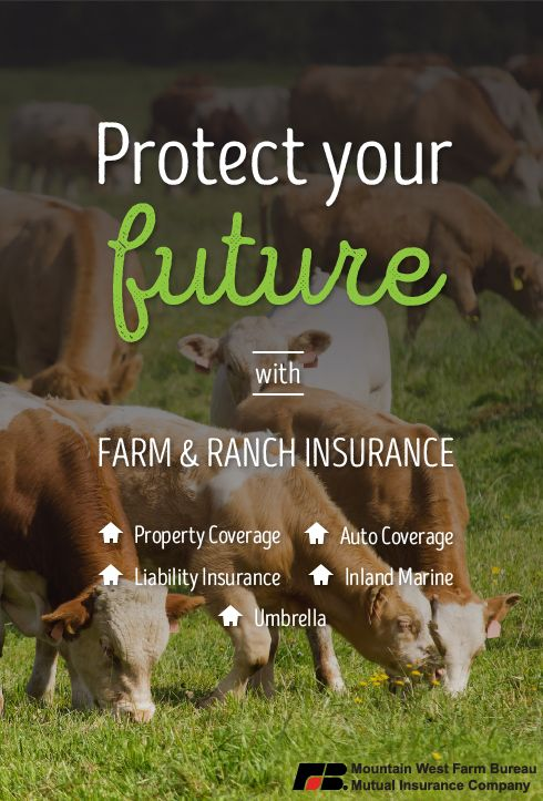 Farm Ranch Insurance Farm Bureau Insurance Insurance Mutual