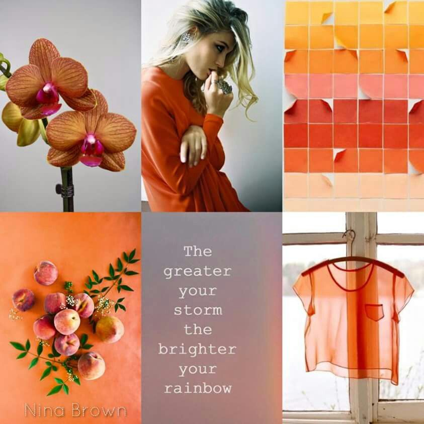 ℒℴѵℯ cjf | Color inspiration, Inspiration, Quote collage