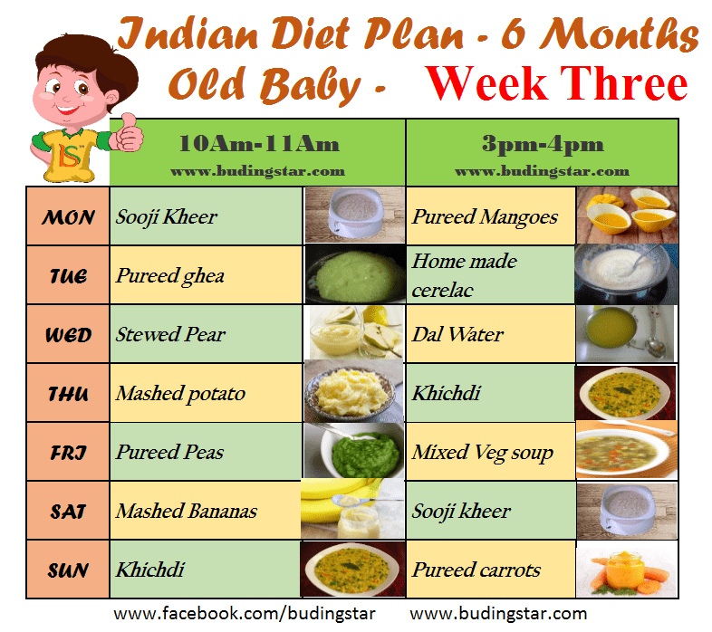 diet plan for a 6 month old baby