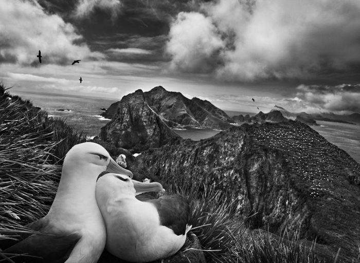 Sebastião Salgado | Photography and Biography