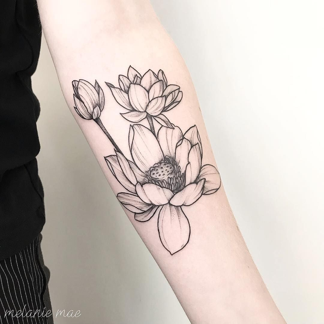 Super Fine Line Lotus For Aafke Thank You For Letting Me Do Your First Tattoo Lotus Lotustattoo Lotusflower Linew Tattoos Bloom Tattoo Line Work Tattoo
