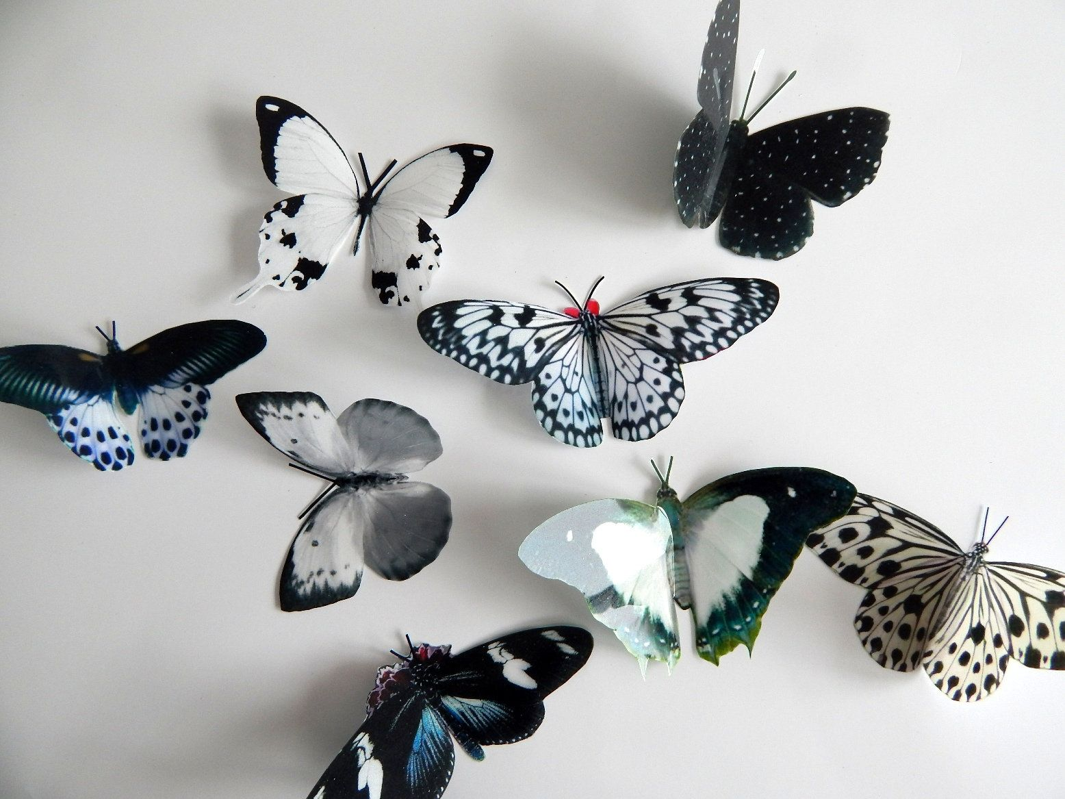black and white natural reproduction 3d butterfly wall on wall stickers 3d id=91766