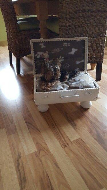 Alter Koffer Deko aus einem alten koffer ein hundebett gemacht meine deko