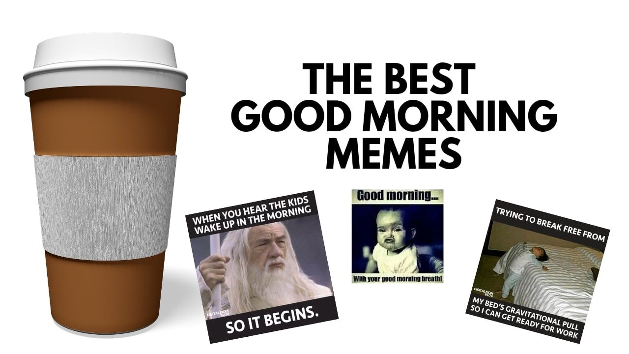 Best Funny Good Morning Memes To Start Your Day With a ...