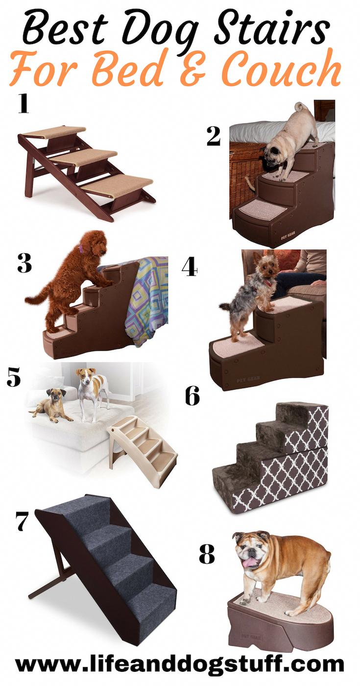 Idee Cucce Per Cani addestramento del cane, idee per cani, accessori per cani