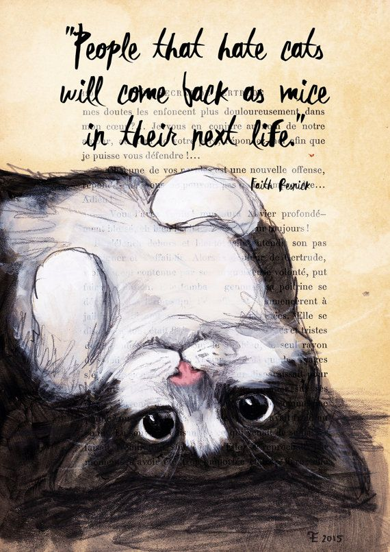 Quote Print-Cat Illustration-Art Print-Cat Art-Home Decor-Reproduction : People…